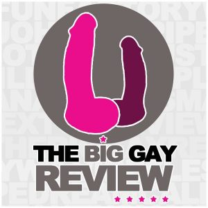Logo image for The Big Gay review of our play sheets, showing cartoon dildos in bright Pink on grey